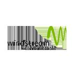 Viqtory partner Windstream